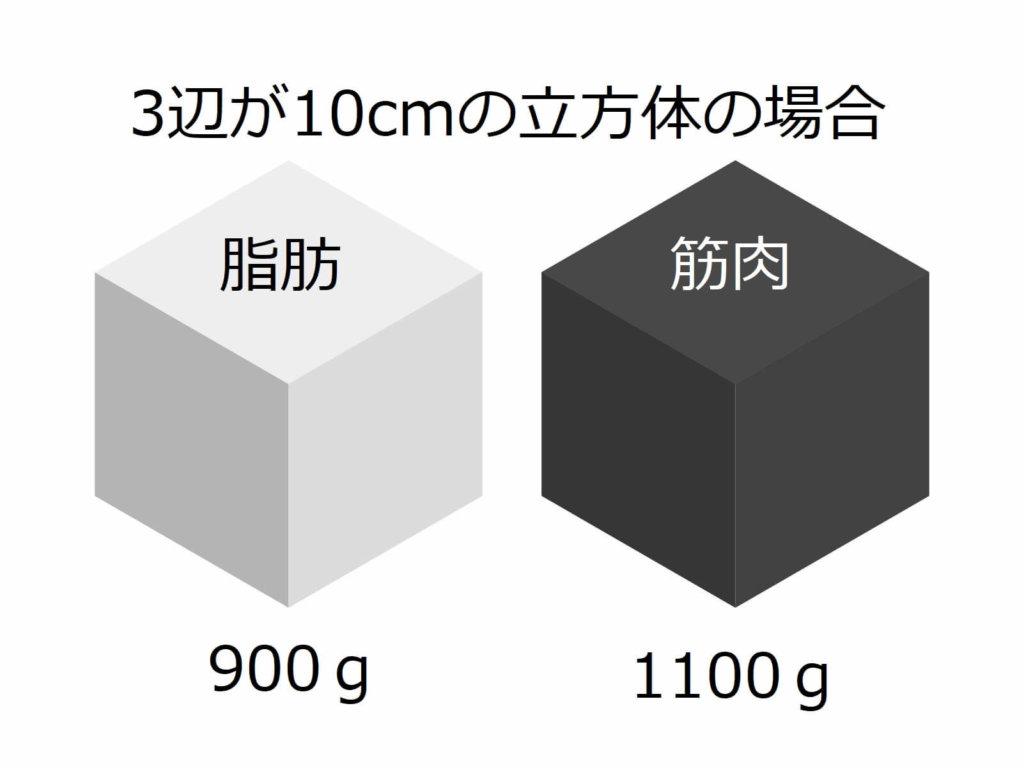 筋肉と脂肪の重さ