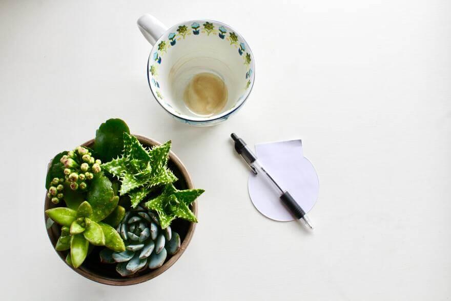 空のジャスミン茶