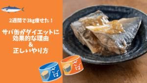 サバ缶ダイエット【アイキャッチ】