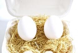 ゆで卵2個